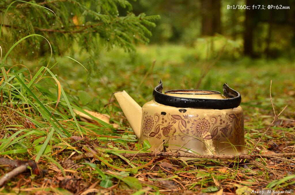 """12. Фото """"Лесной натюрморт с чайником"""". Кропнутая зеркальная камера Nikon D5100 body + Sigma 18-250"""