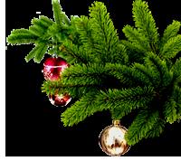 Поздравления с Новым Годом и Рождеством! 0_eeede_2cfc2f5_M