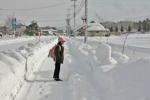 77 не слишком известных фактов о Японии
