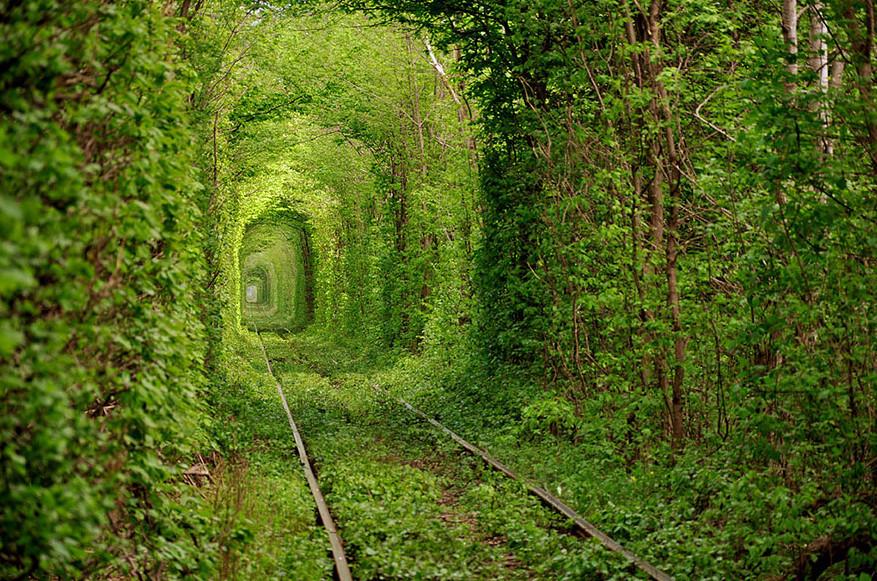 Тоннель любви. Украина.