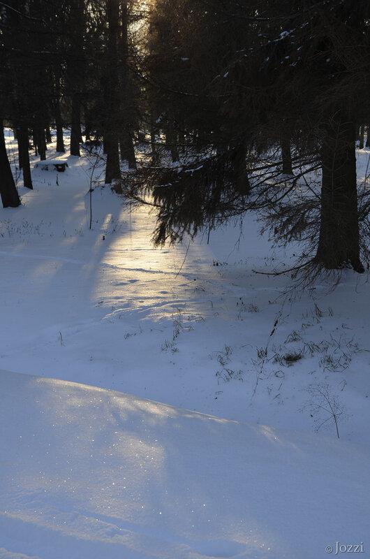 зимой в парке