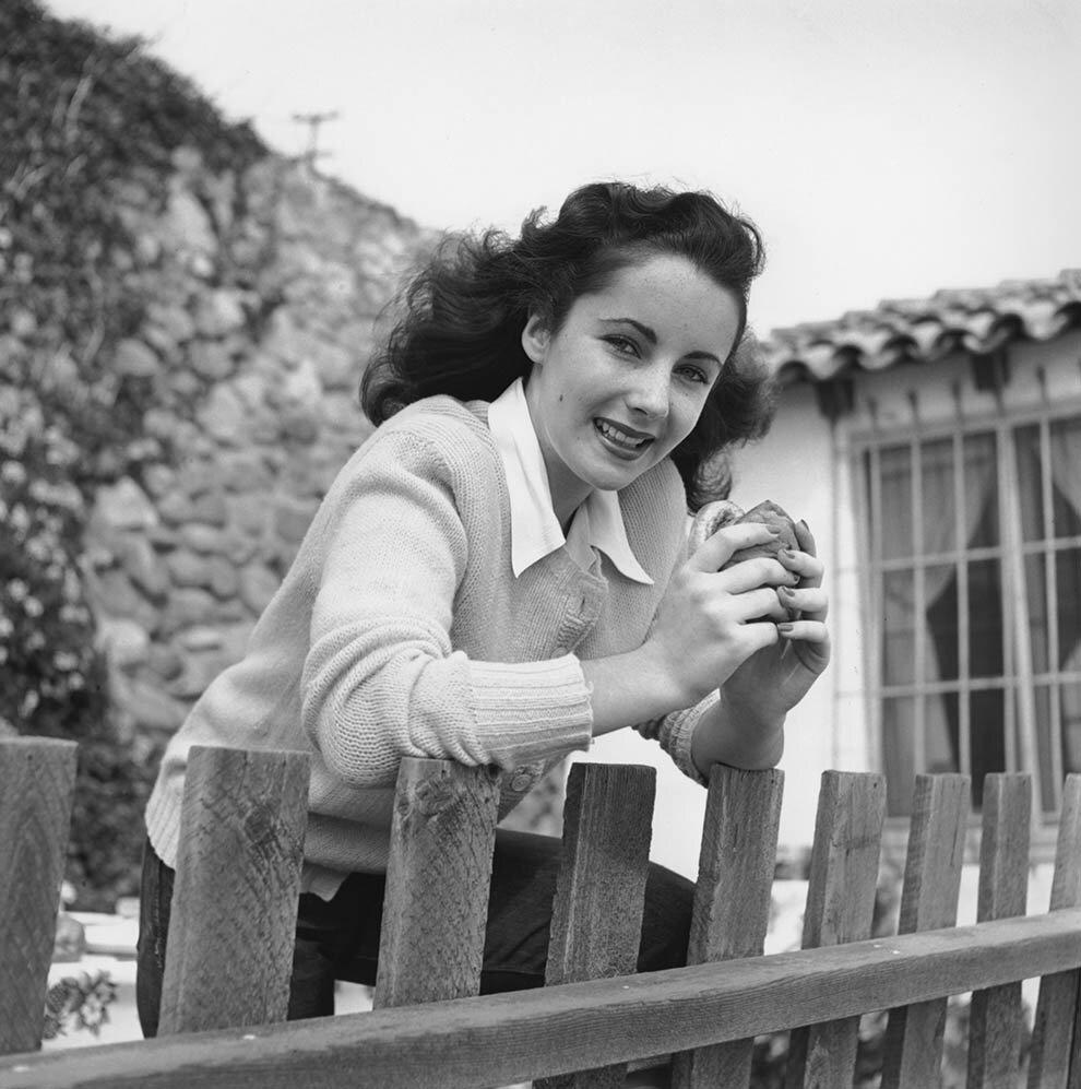 1949. Элизабет Тейлор ест гамбургер у забора