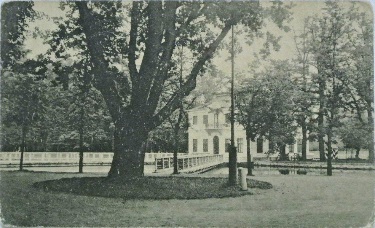 Дуб Петра Великого в Нижнем Императорском саду. Старый Петергоф