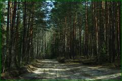 http://img-fotki.yandex.ru/get/98971/15842935.2db/0_e3056_f4cff6aa_orig.png