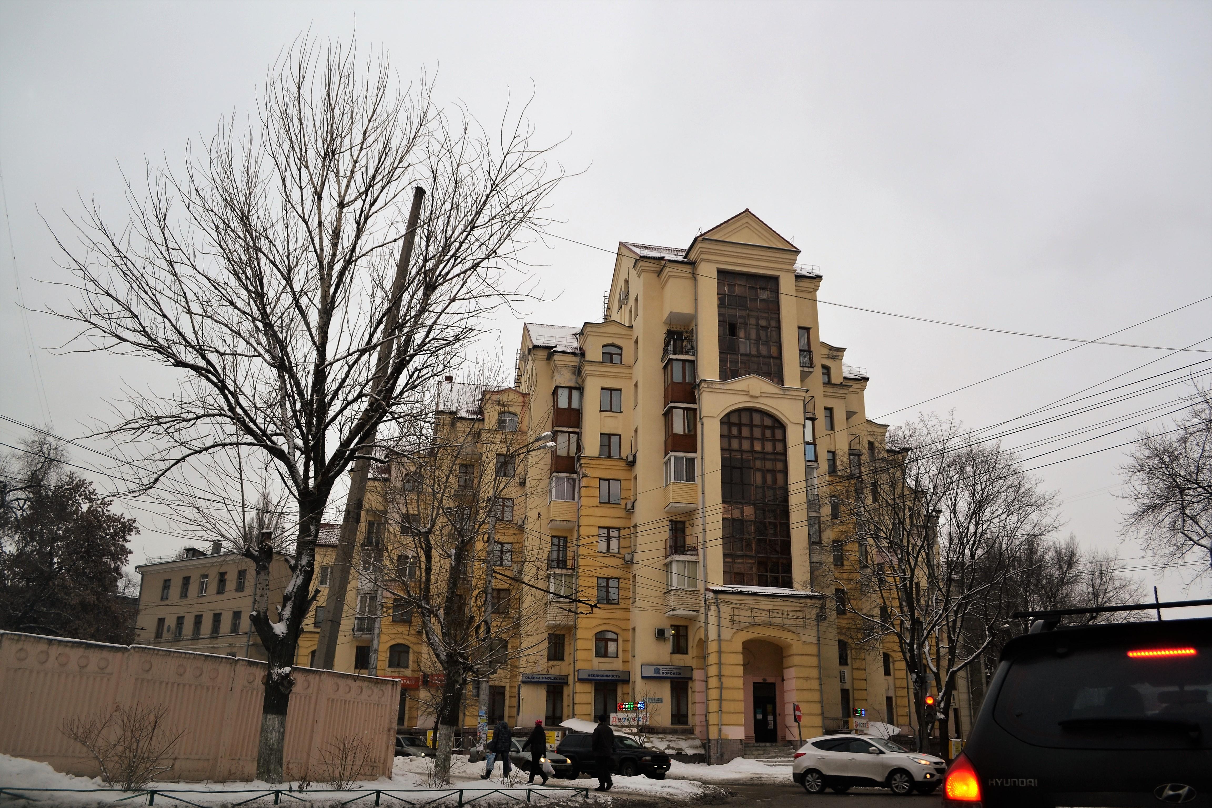 Воронеж за 1 день
