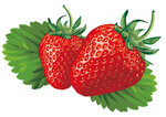 Cute-Strawberry-Vector.jpg