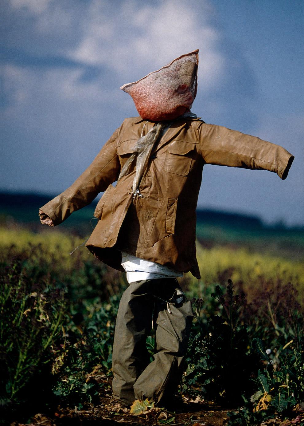 3. Пугало-женщина — достаточно большая редкость, если верить автору фотографий, а повидал он их