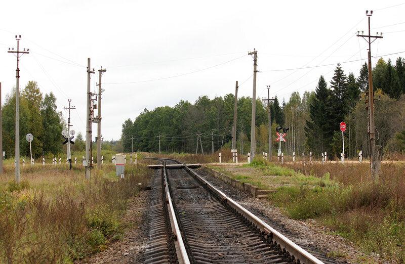 Платформа 354 км и переезд, вид на Ржев
