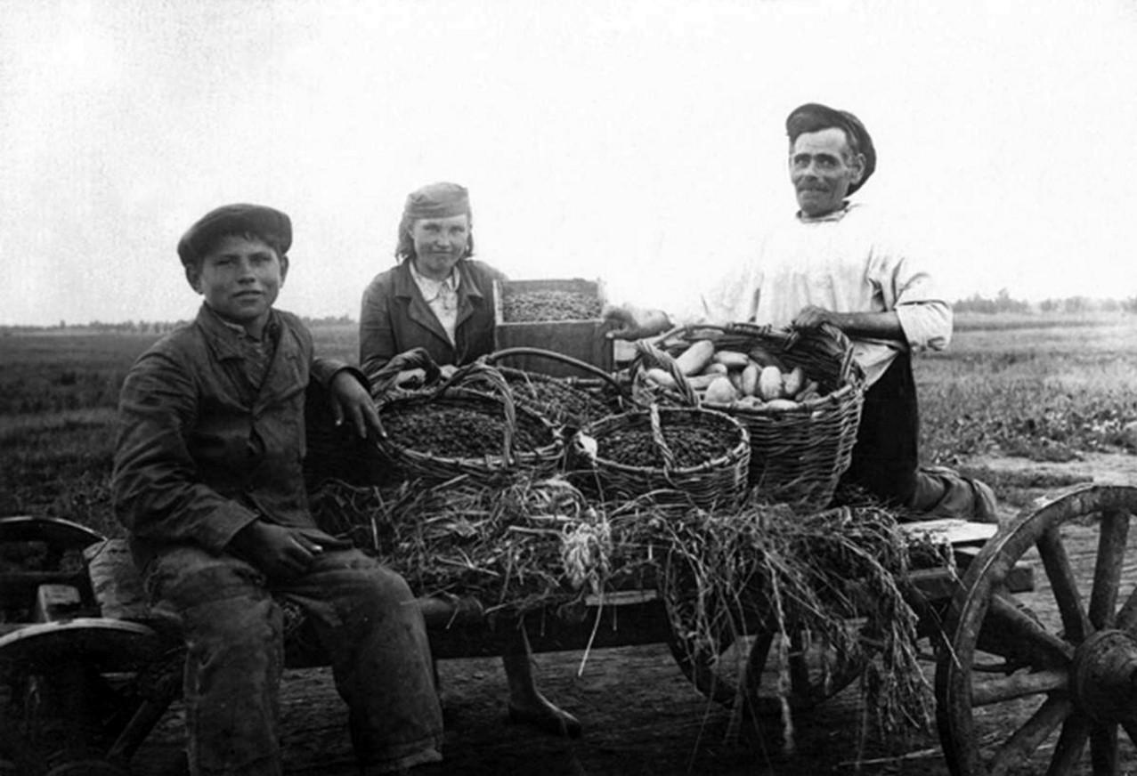 1925. Колхоз «Вторая пятилетка»