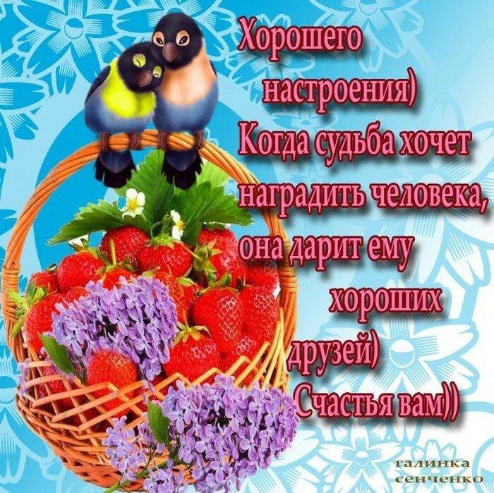открытки доброму человеку добрым днем