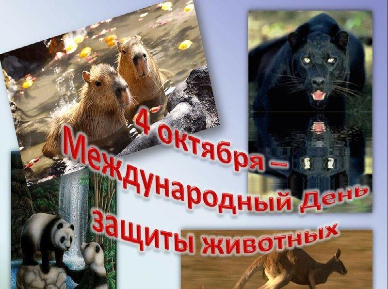 Открытка день животных