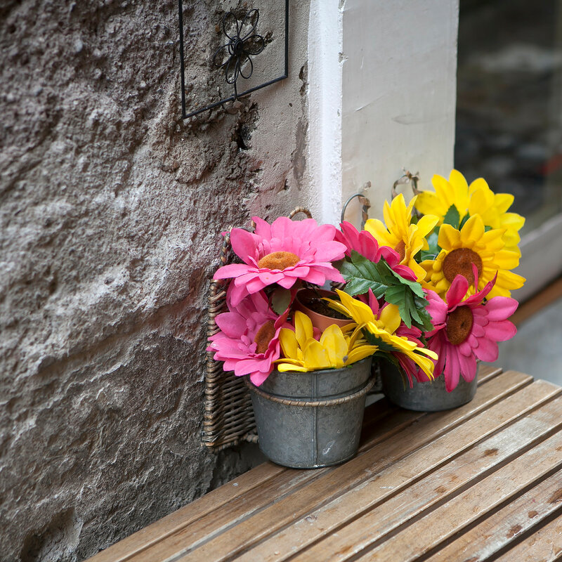 the artificial raspberry and yellow daisies in a vase near the wall.