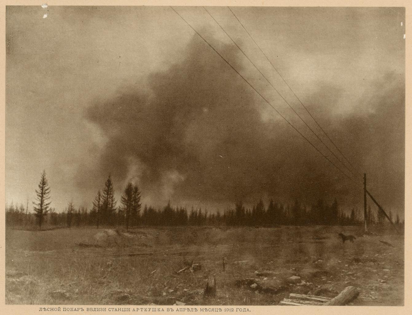 Лесной пожар вблизи станции Артеушка в апреле месяце 1912 года