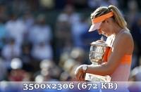 http://img-fotki.yandex.ru/get/9930/14186792.1/0_d6e1e_babac082_orig.jpg
