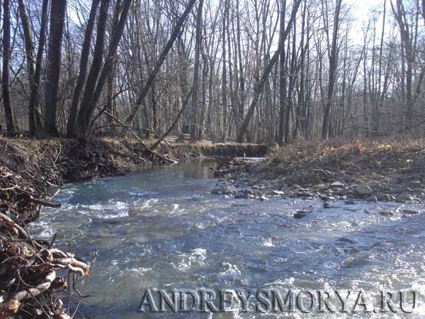 Река Адегой в хуторе Ахонка зимой
