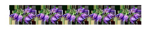 "Разделители ""Весенние цветы""."