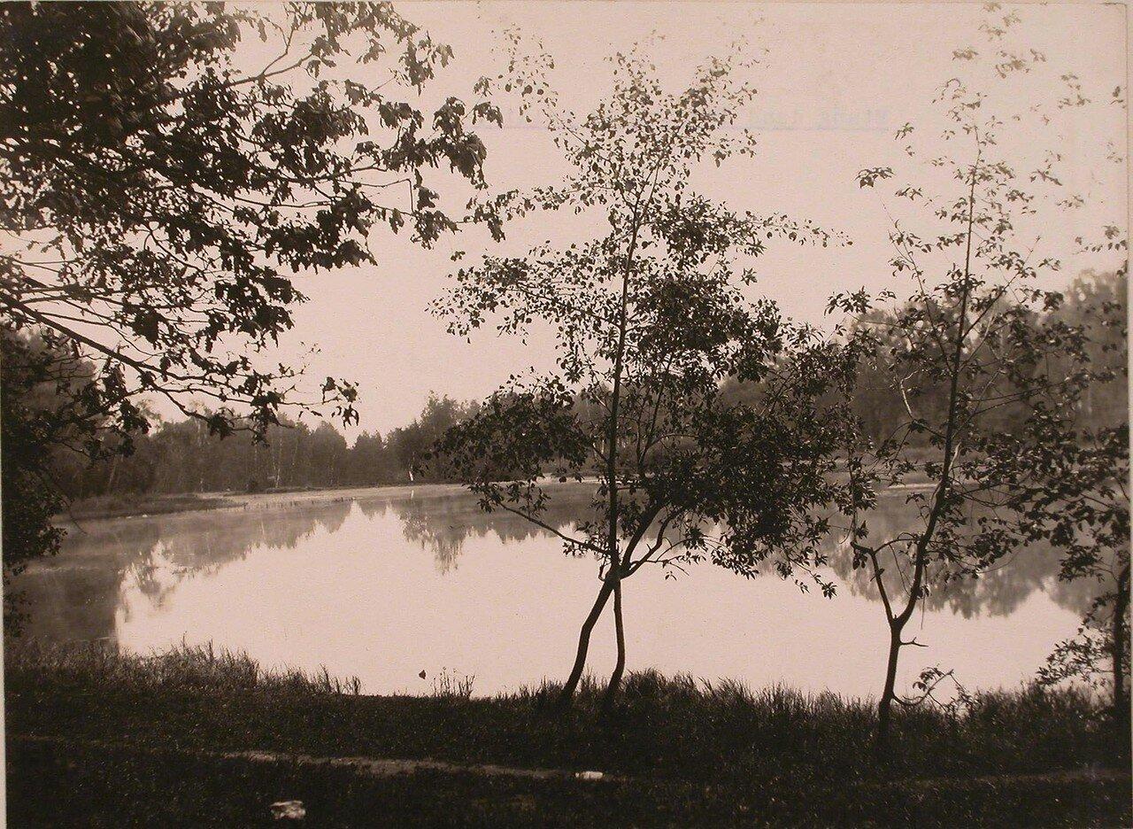 Общий вид пруда в усадьбе Шереметевых. 1913