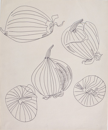 Five Views of an Onion