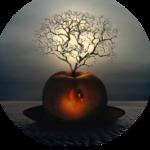 Mist_AppleTree_DragonBlu0808.png