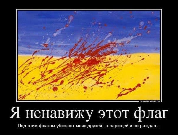 VRgQBcUK_Vk.jpg