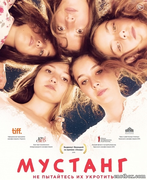 Мустанг / Mustang (2015/WEB-DL/WEB-DLRip)