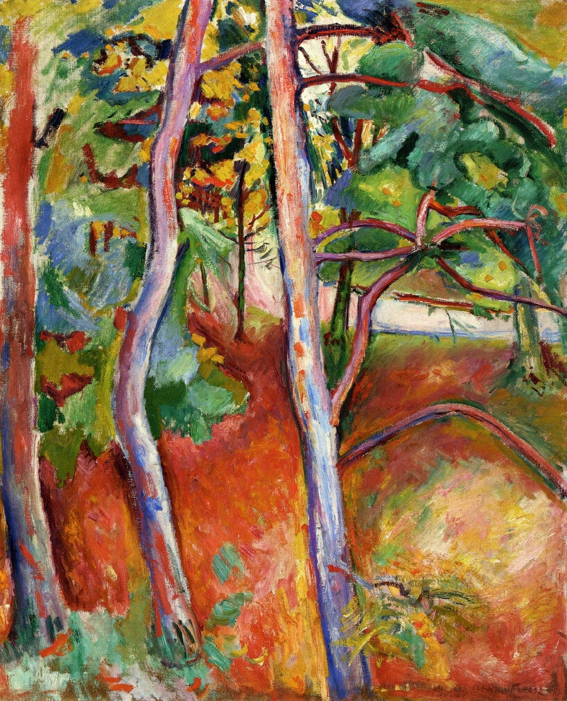 Emile-Othon Friesz - Trees, Autumn, 1906.jpeg