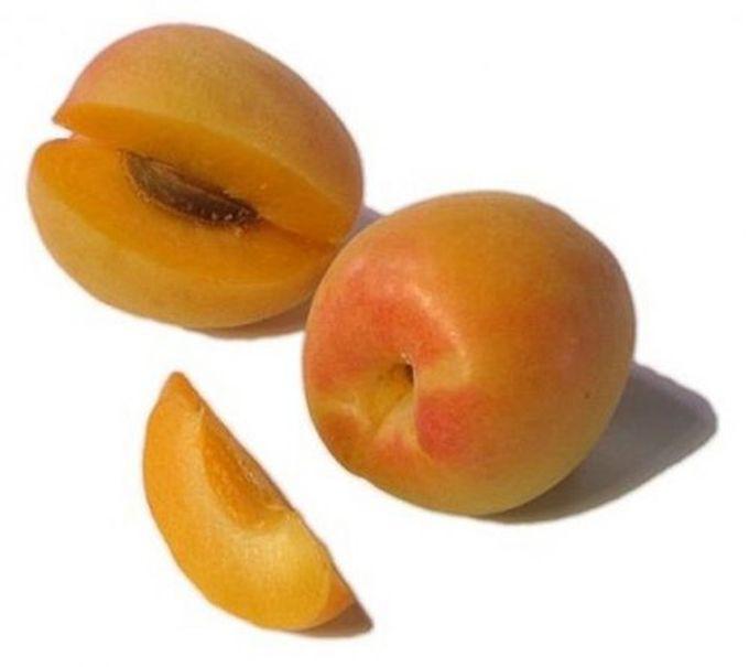 Агли — гибрид грейпфрута, апельсина и мандарина