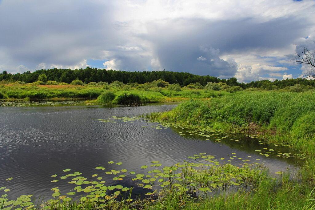 *     Река играет синей рябью...