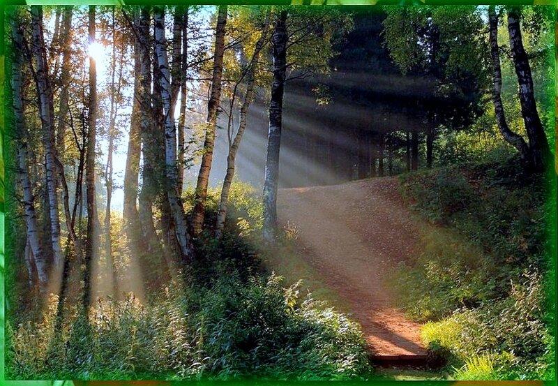 Природа, пейзаж, фото из интернета (177).jpg