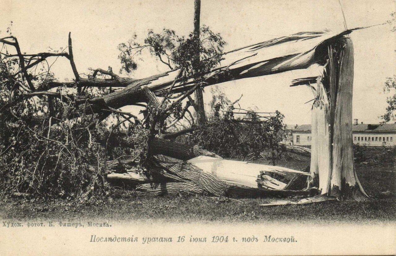 Последствия урагана 16 июня 1904 года под Москвой