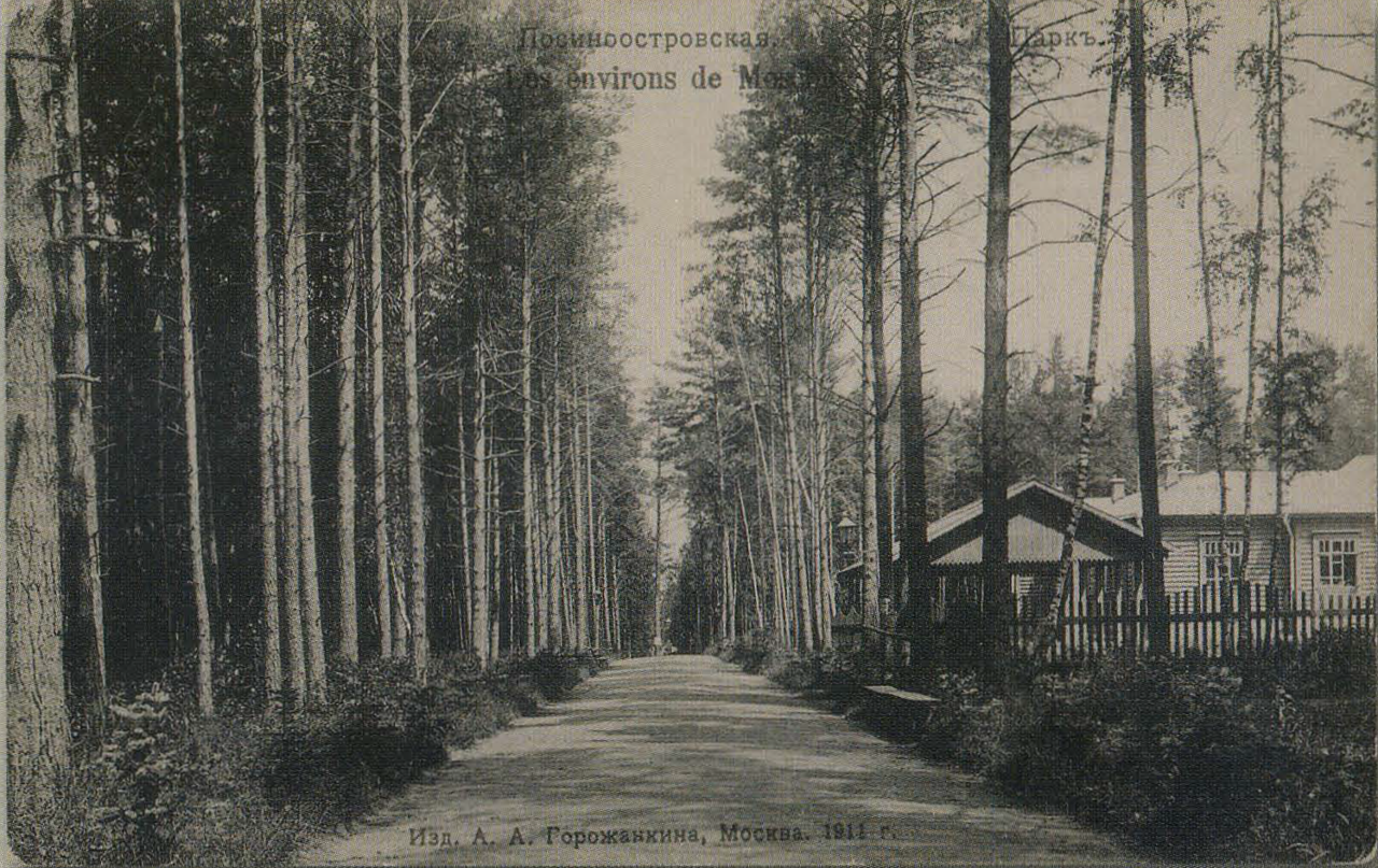 Окрестности Москвы. Лосиноостровская. Парк