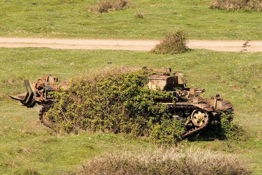 tank10.jpg