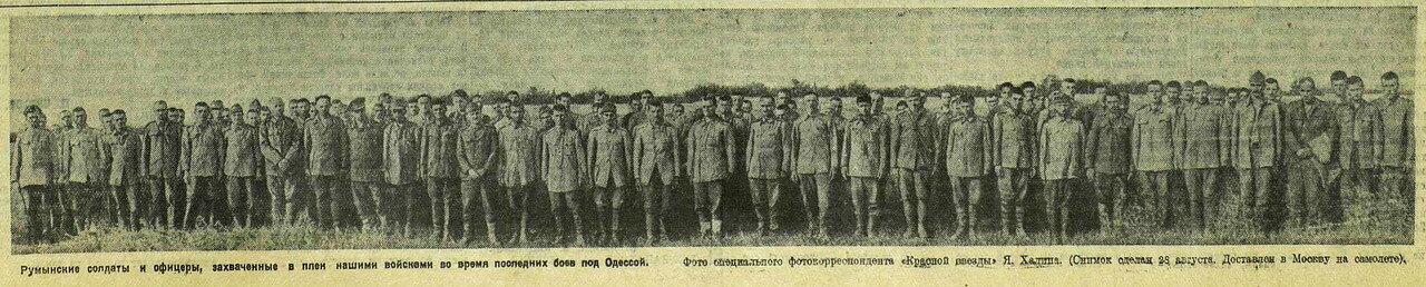 пленные румыны, союзники Гитлера, военнопленные, «Красная звезда», 30 августа 1941 года