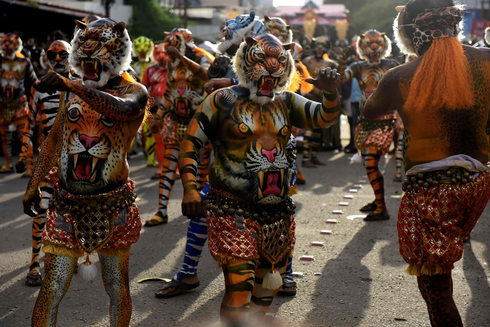 Танцы тигра в Индии