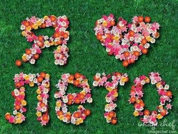 Я люблю лето! Надпись выложена из цветов