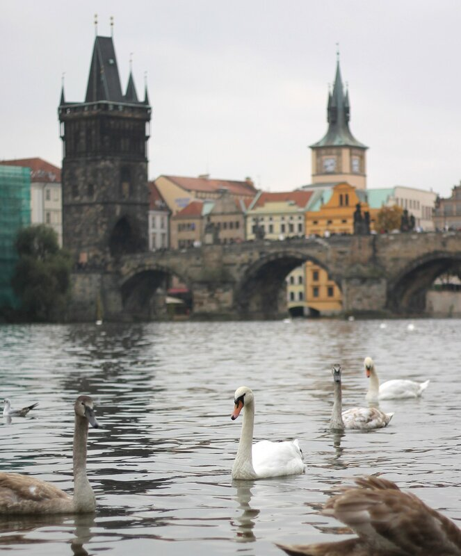 Prague in Autumn