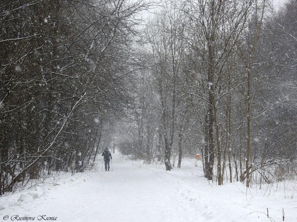 Следы на снегу. Часть 8