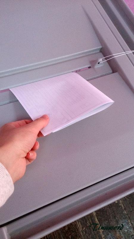 выборы-15.jpg