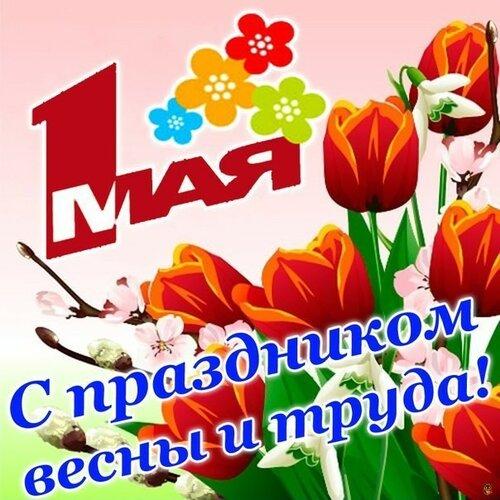 1 мая! С праздником Весны и Труда! Букет тюльпанов открытка поздравление картинка