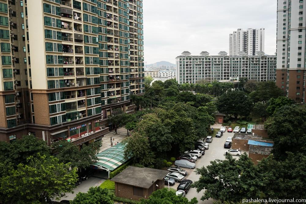 Вид из окна: многоэтажный жилой район, не совсем в центре, а все равно зеленый. Как китайцам это уда