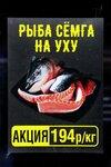 рыба сёмга на уху IMG_2257.JPG