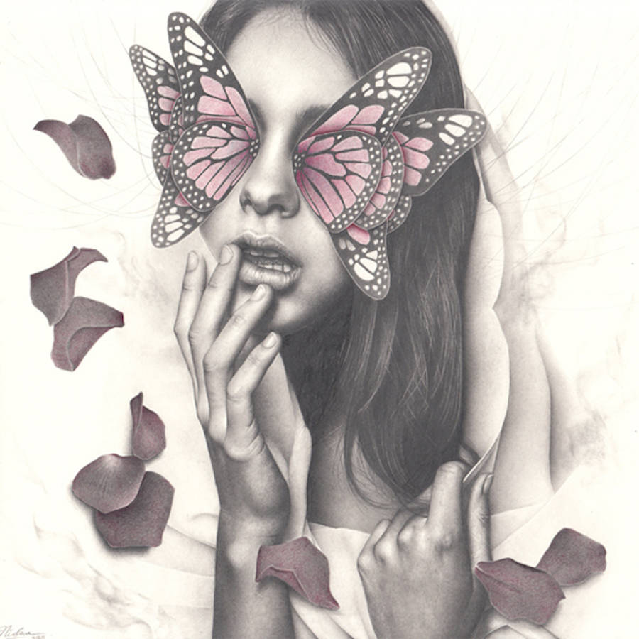 The Butterfly Women Series (8 pics)