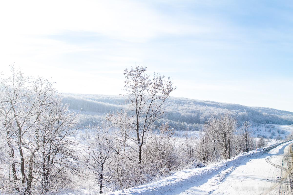 зима дорога фото 5