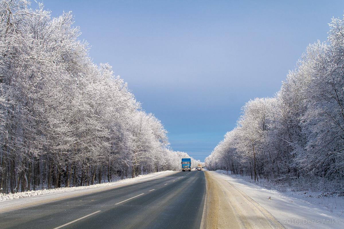 дорога национальный парк хвалынский фото 3