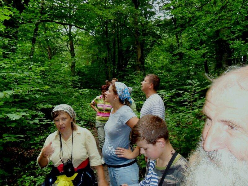Созерцание в лесу ... SAM_0677.JPG
