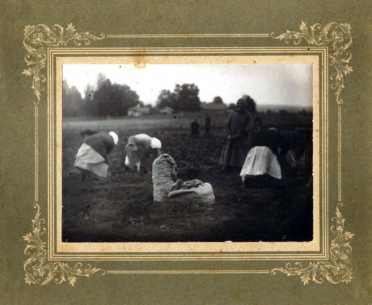 1920-е. Производство крахмала в селе Усть-Чепца