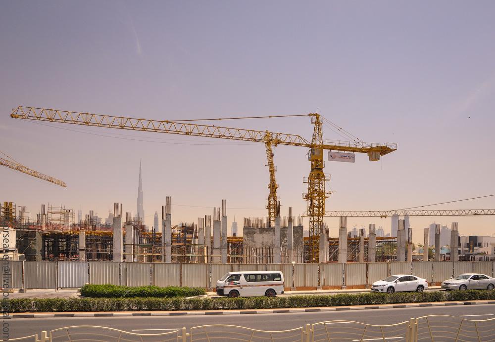 Dubai-Critic-(29).jpg