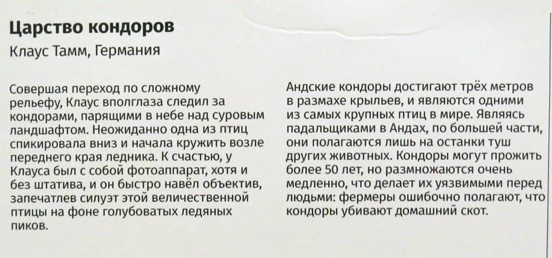 https://img-fotki.yandex.ru/get/998719/140132613.6d3/0_24469b_edbc7778_XL.jpg