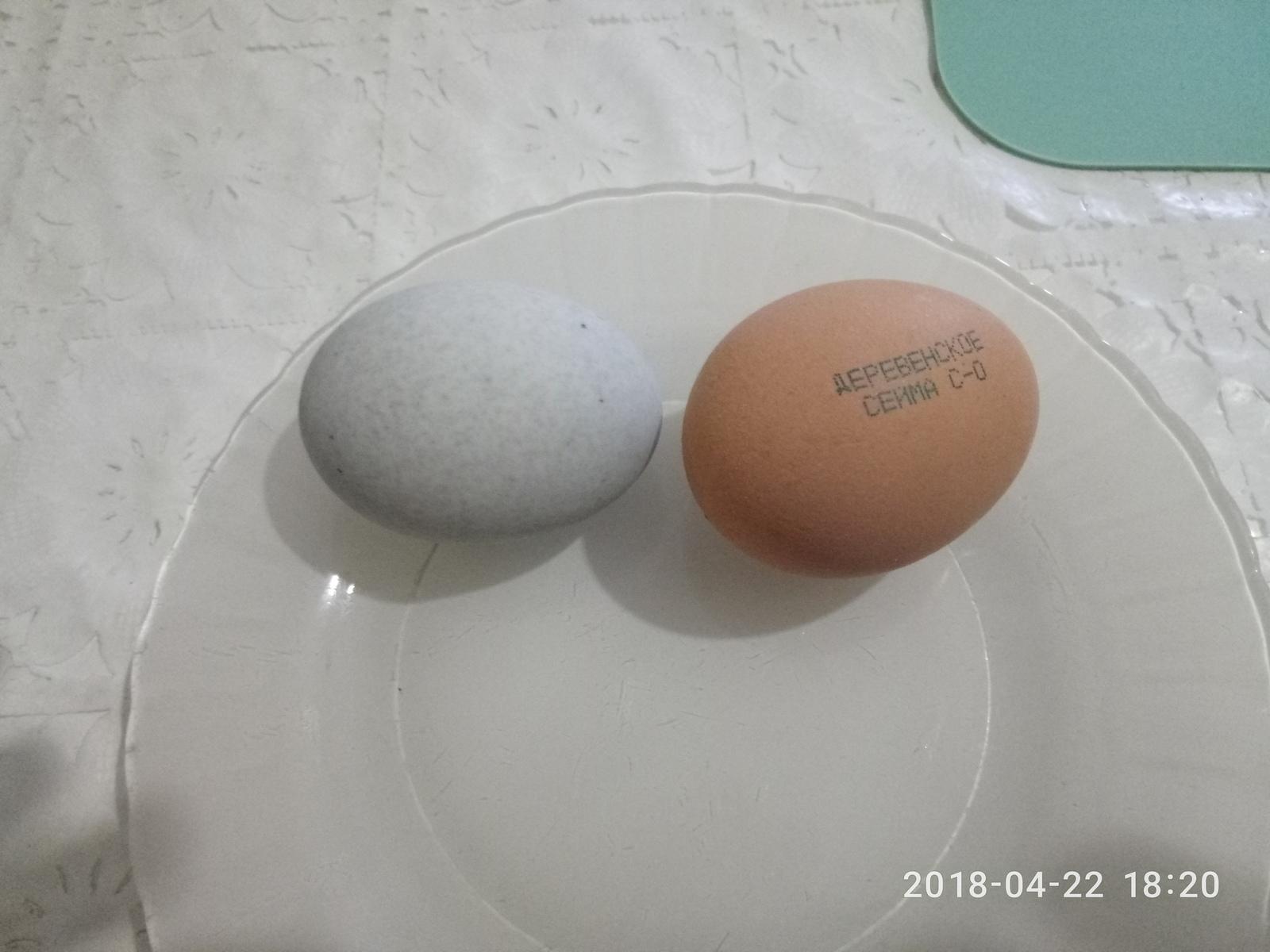 Про столетние яйца от первого лица